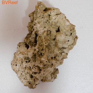 Камень сухой рифовый